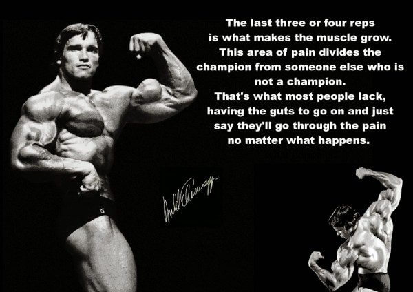 Arnold Schwarzenegger is an inspiration to bodybuilders everywhere.