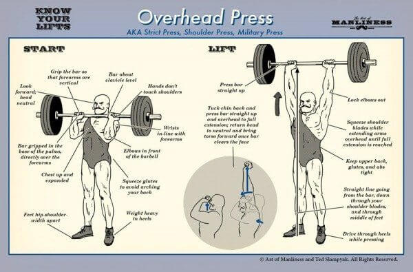 How to do Overhead Presses with Great Form - MaxedMuscle.com