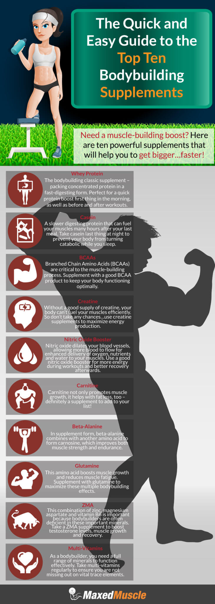 Infographic The Quick and Easy Guide to the Top Ten Bodybuilding Supplements