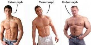 There are three main body types: endomorph, ectomorph and mesomorph.
