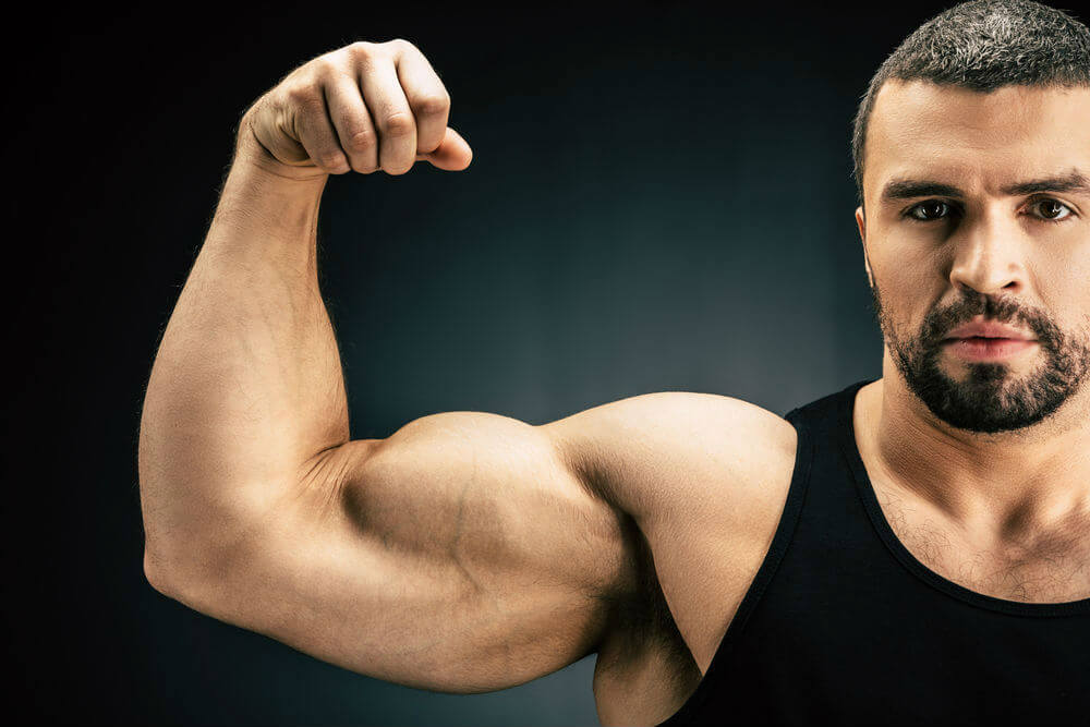 How To Get Big Arms With Preacher Curls