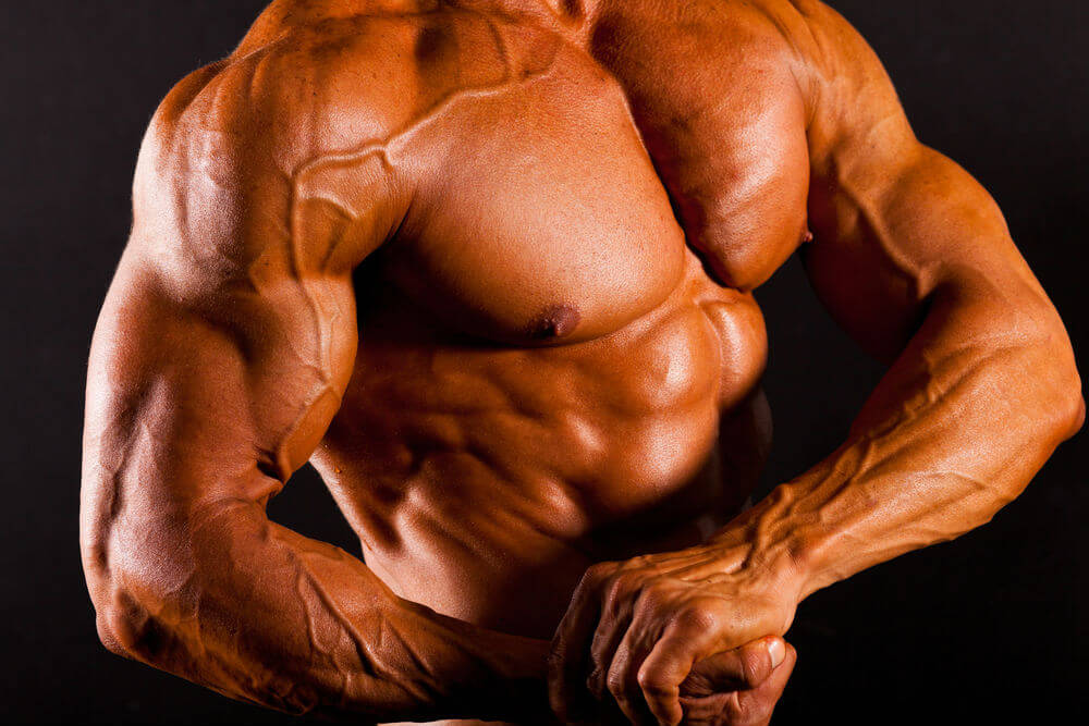 how to maximise muscle growth