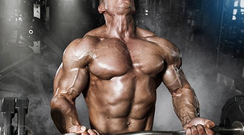 Rose Glen North Dakota ⁓ Try These Best Sarms For Cutting 2019